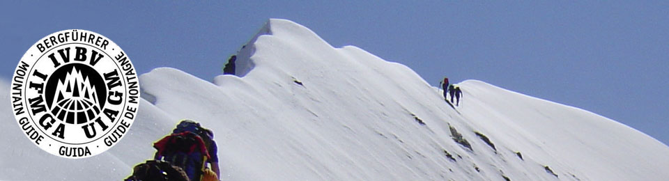 Claudio Bernardi, Guida Alpina